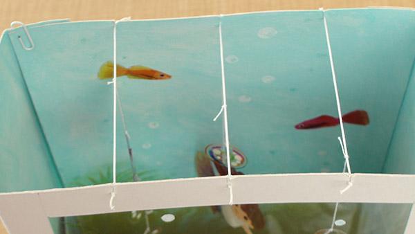 Aquarium012