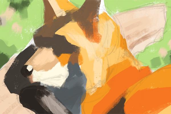 picture-fox004