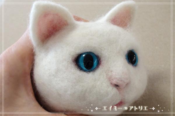 Cat009