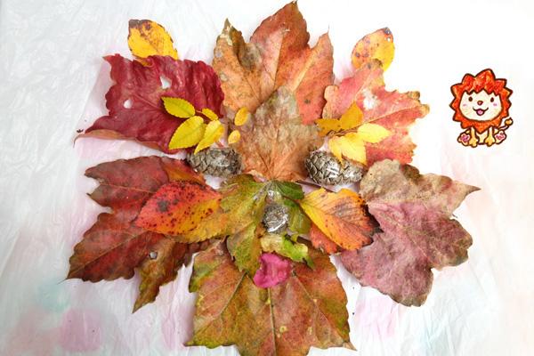 2019-autumn-leaves08
