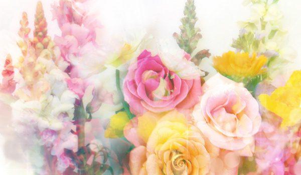 2020-gift-flower01